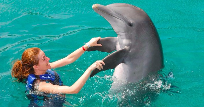 Dolphin Swim Adventure en Saint Kitts