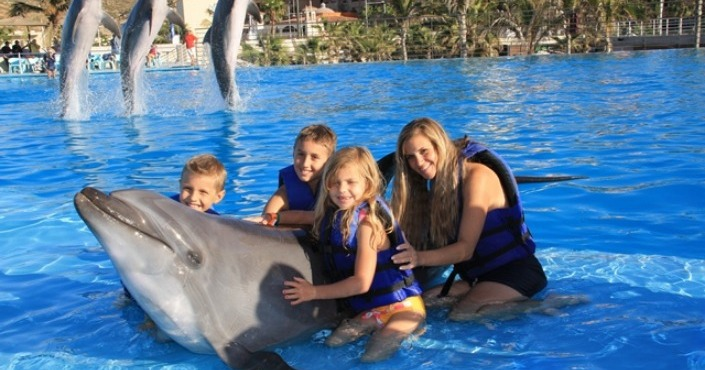 Dolphin Royal swim Plus Los Cabos